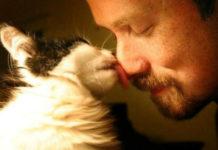 9 признаков кошачьей любви к вам