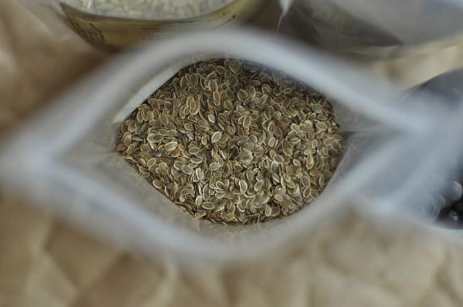 Выращивание укропа из семян в домашних условиях
