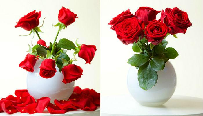 5 способов сохранить подаренные цветы свежими2