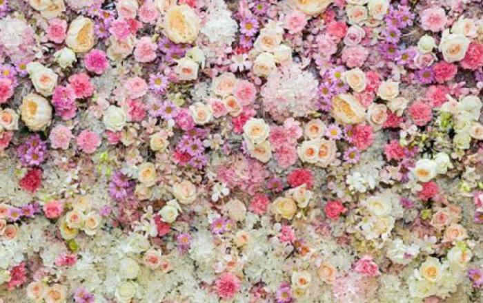 Что расскажет о вашем характере ваш любимый цветок