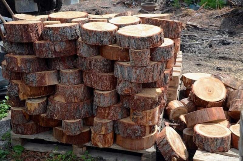 Пол из спилов дерева своими руками: его особенности и монтаж