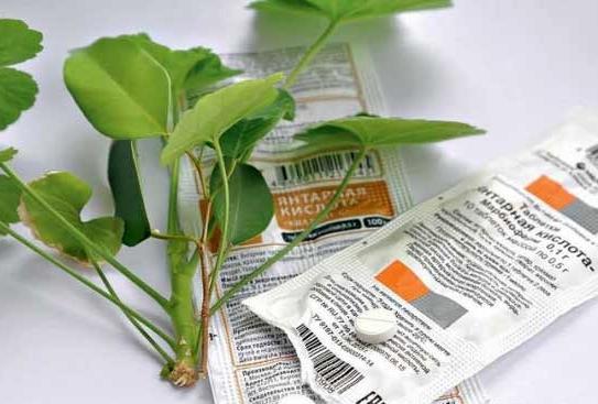 Средство, которое сможет реанимировать любое растение