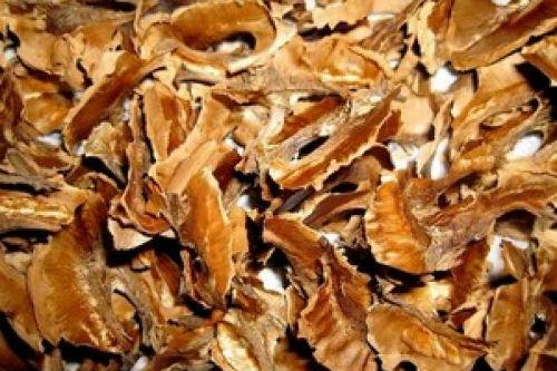 Целебные свойства перегородок грецкого ореха