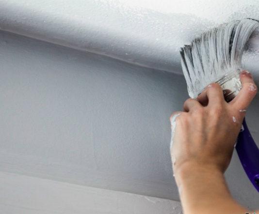 Идеи по покраске потолка (видео)