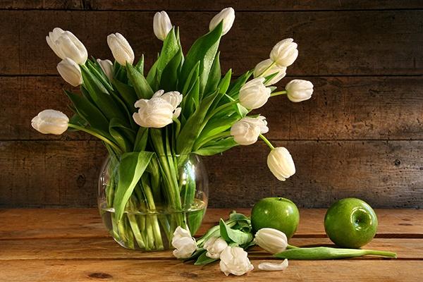 Как продлить жизнь срезанных цветов