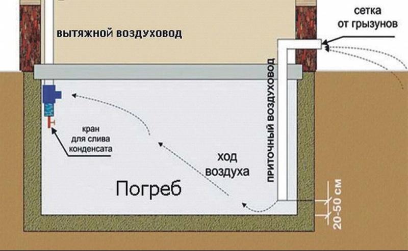 http://obustroen.ru/wp-content/uploads/2018/03/1520238029_5a9cfdca54d5e.jpg