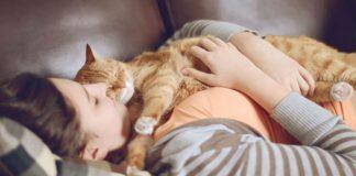 Причины, по которым кошка предпочитает спать на теле хозяина - Читайте подробнее на FB.ru: http://fb.ru/post/pets/2019/1/21/52680?utm_referrer=https%3A%2F%2Fzen.yandex.com