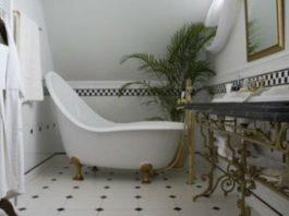 Растения, которые великолепно себя чувствуют в ванной