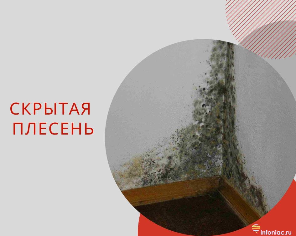 http://www.infoniac.ru/upload/medialibrary/385/3857972e5a9f245c70bafca750ae5edc.jpg