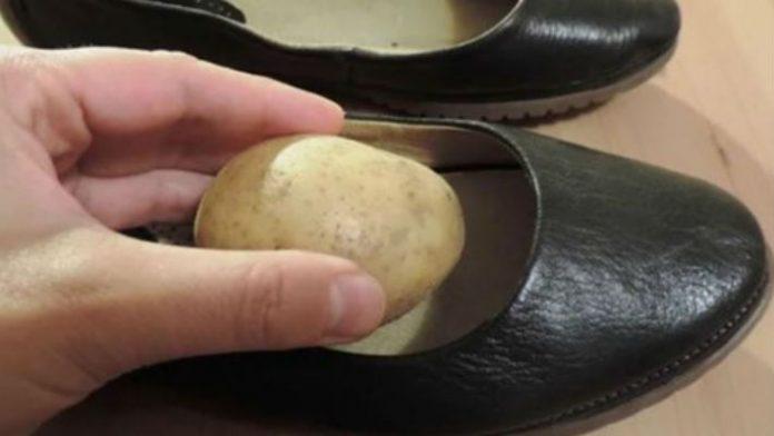 Зачем опытные хозяйки кладут чищенную картошку в обувь: совет, который пригодится каждому Источник: https://novate.ru/blogs/010419/49966/?fbclid=IwAR1zda5XCB-wQ8nOyV37xXgKFhw8FaBmonXGEydwmYGQrpTtCYb4XfL_iTY