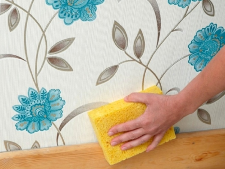 Необычное использование самой обычной губки для уборки