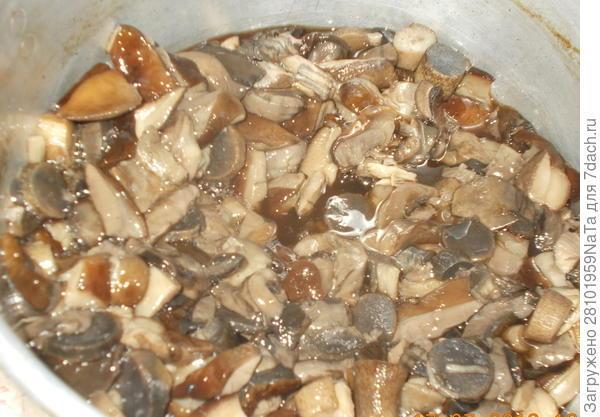 Отвариваем лесные грибы