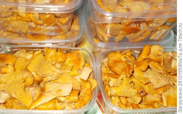 Раскладываем грибы по контейнерам
