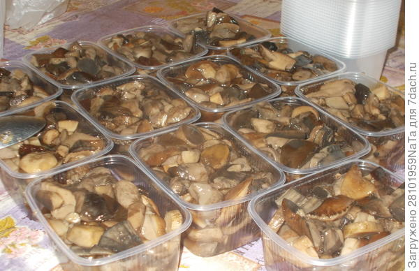 Раскладываем по контейнерам грибы