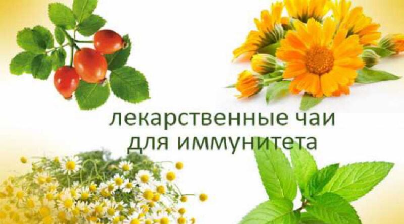 https://prolife.ru.com/wp-content/uploads/2019/09/chai-dlya-immuniteta.jpg