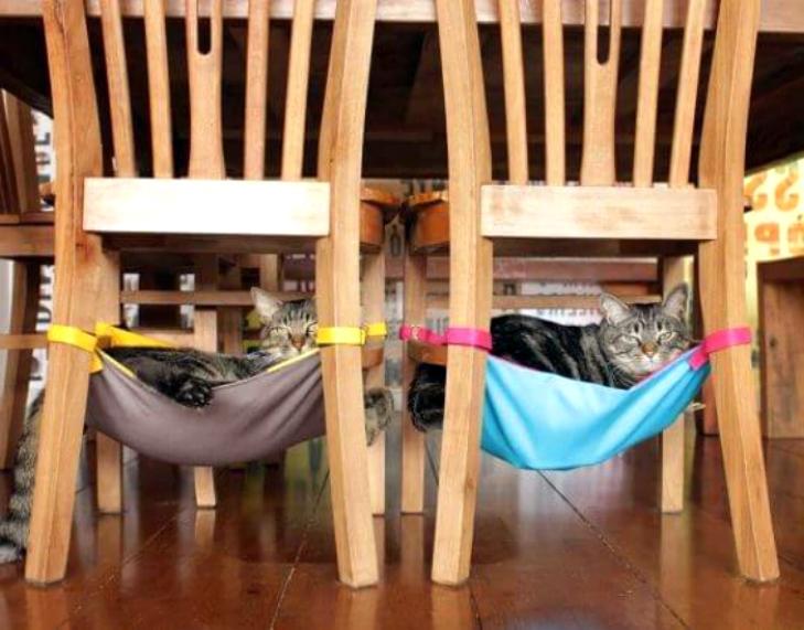 Гамаки для котов