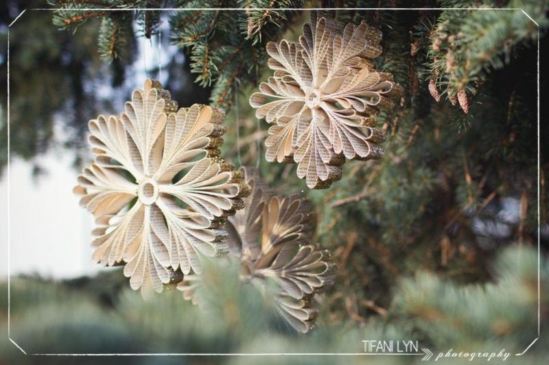 https://prolife.ru.com/wp-content/uploads/2019/12/1513006089-5753-tmas-Snowflake-Tifani-Lyn-17.jpg