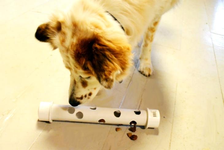 Развивающая палочка для собаки